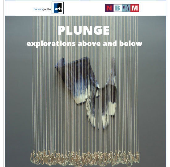 Plunge Press Release